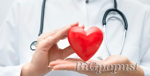 1190, rsd, za, internistiki, pregled, ekg, i, ultrazvuk, abdomena, u, so, spiridon