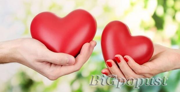 2990, rsd, za, pregled, kardiologa, , ekg, srca, , ultrazvuk, srca, sa, kolor, doplerom, , izvetaj, i, predlog, terapije, u, vaoj, kui, zdravlja, na, vidikovcu