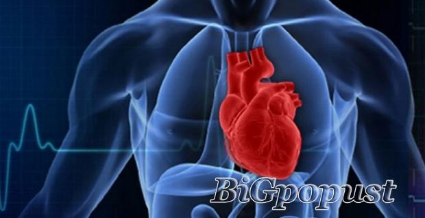 3300, rsd, , za, kompletan, kardioloki, pregled, sa, ekg, i, uz, srca, u, poliklinici, bonadea