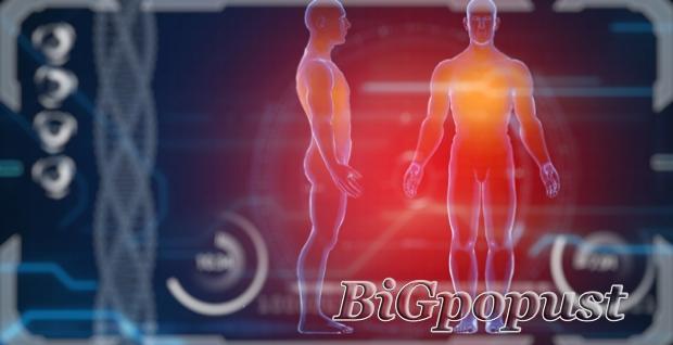 3500, rsd, za, biorezonantni, skener, , precizna, dijagnostika, svakog, organa, i, svih, promena, na, telu, , terapija, , saveti, pregled, obavlja, doktor, medicine