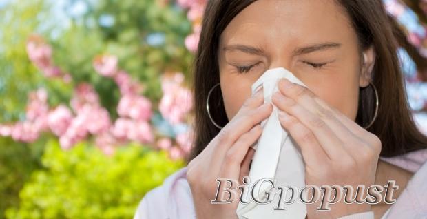 3990, rsd, alergoloki, testovi, sa, standardnim, inhalacionim, i, nutritivnim, alergenima
