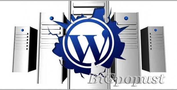 4700, rsd, za, kurs, wordpress, od, apsolutne, nule, napravite, svoj, sajt, ili, blog, u, wordpressu,
