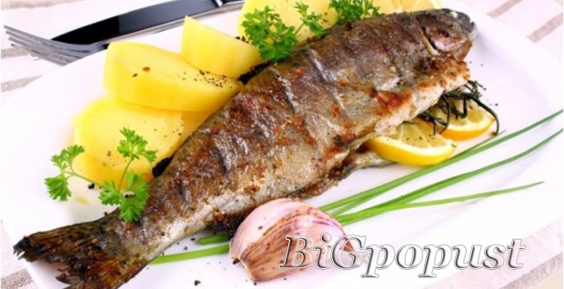 599, rsd, pastrmka, na, aru, za, 2, osobe, , dalmatinski, prilog, ili, krompir, salata, , 2, riblje, orbe, , , 2, dezerta