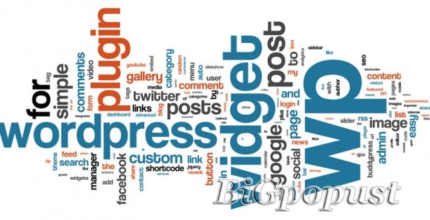 900 rsd za multimedijalni kurs Word Press-a  ili Webdesing-a 1