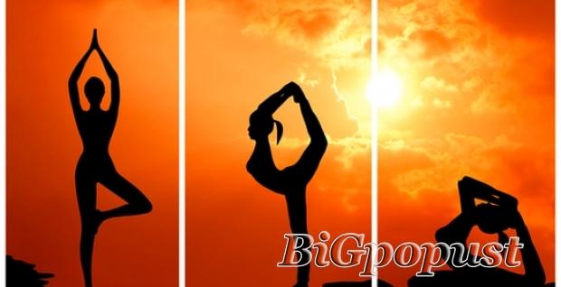 950, rsd, za, mesec, dana, treniranja, u, fitnes, klub, centru, po, izboru, fitness, belly, dance, pilates, zumba, aerobik, total, body, workout,