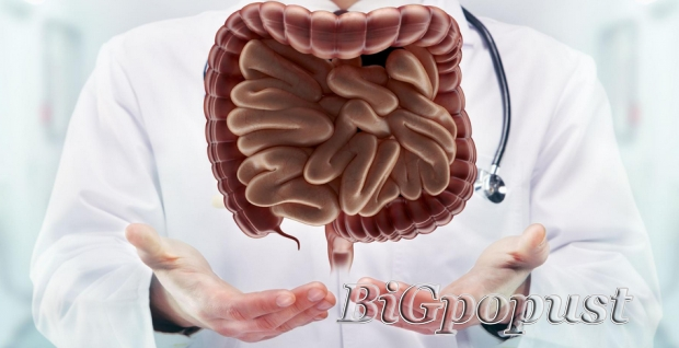 anoskopija, sa, sklerozacijom, hemoroida, za, 6000, rsd