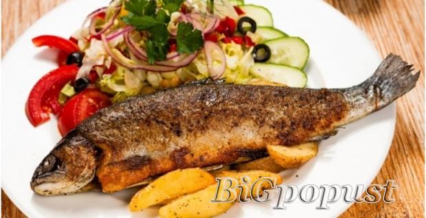 519, rsd, skua, , na, aru, za, 2, osobe, , dalmatinski, prilog, ili, krompir, salata, , 2, riblje, orbe, , , 2, dezerta