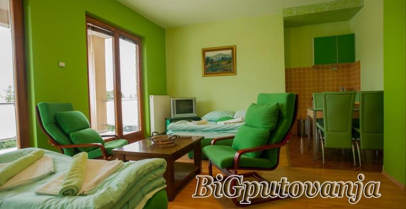 Vaucer od 300 rsd za extra popust: najam novih apartmana u vili Jana na ZLATIBORU (doplata 2667 rsd - 4 osobe) 2