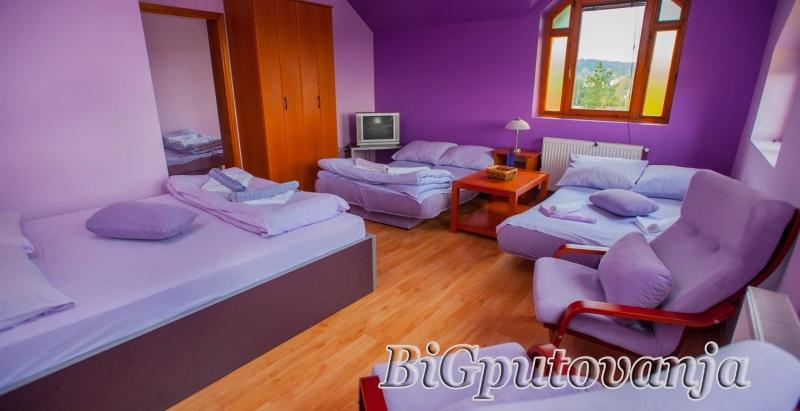 Vaucer od 600 rsd za extra popust: najam novih apartmana sa odvojenom spavacom sobom u vili Jana na Zlatiboru (doplata 5334 rsd - do 8 osoba) 2