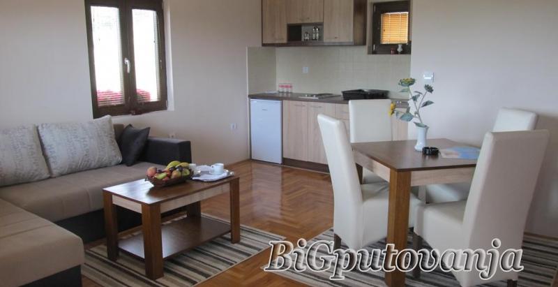 ZLATIBOR - Apartmani Monix Village vec od 5150 rsd (4-6 osoba dnevno po apartmanu) - preko 7 nocenja 20% popust  3